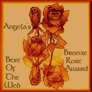 Bronz Award